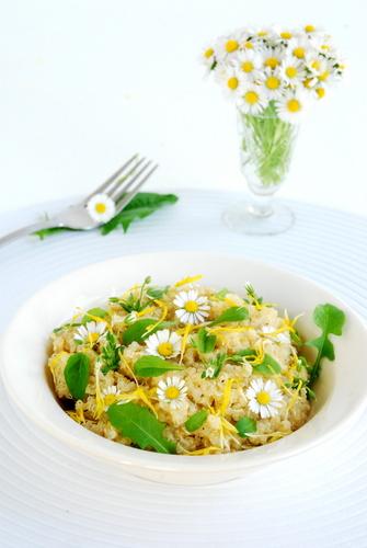 Quinoa zkwiatami ichwastami